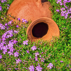 Summer Garden Urn and Phlox by Janice Pariza