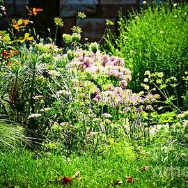 Summer Gardens at the Cloisters 12 by Sarah Loft
