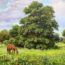 Summer Meadow by Serhiy Kapran