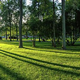 Summer Morning in Park by Helen Filatova