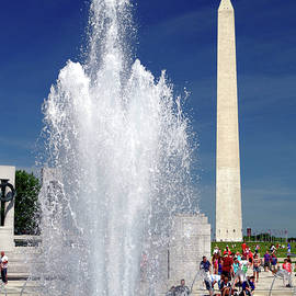 Summer On The National Mall by Douglas Taylor