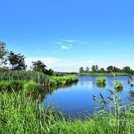 Summer Serenity-Mill Creek Marsh NJ by Regina Geoghan
