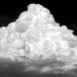 Summer Storm Cloud - Monochrome by Douglas Taylor