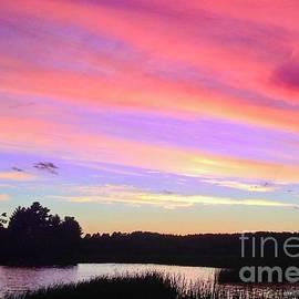 Summer Sunset Beauty by Ann Brown