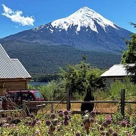 Summertime under Osorno Volcano by Heidi Fickinger