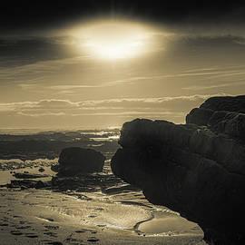 Sun kiss by Paulo Viana