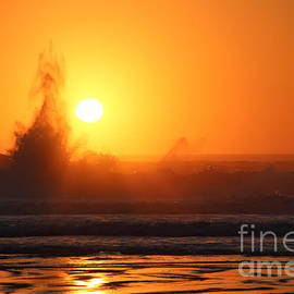 Sun Splash by Marci Hammock