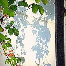 Sun Stencil 3 by Nancy Kane Chapman