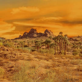 Sundown at Papago Park by Barbara Zahno