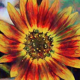Sunflower 36 by Pamela Cooper