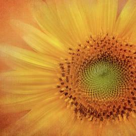 Sunflower Drama by Terry Davis