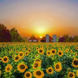 Sunflower Field At Sunrise by Sandi OReilly