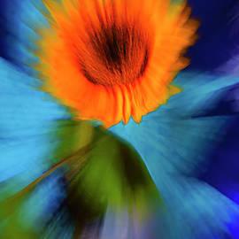 Sunflower In The Sky. by Alexander Vinogradov