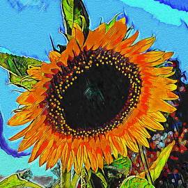 Sunflower by Rolleen Carcioppolo