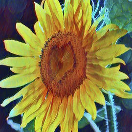 Sunflower Time by Theresa Campbell