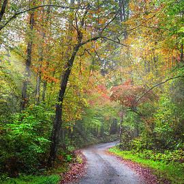 Sunlit Autumn Trails by Debra and Dave Vanderlaan