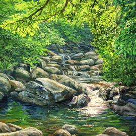 Sunlit Forest Creek by Steph Moraca