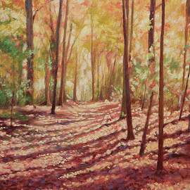 Sunlit Forest - Trail at Fairy Stone Park by Bonnie Mason