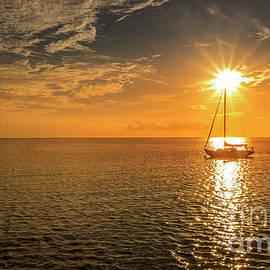 Sunlit Sailboat by Mitch Shindelbower