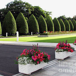 Sunlit Trees and Flowers - Preston Temple Grounds in Summer by Kathryn Jones
