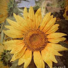 Sunny Days and Sunflower by Luther Fine Art