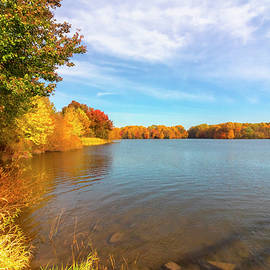 Sunny Fall Day by Denise Harty
