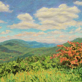 Sunny Mountaintop - Blue Ridge Mountains Landscape by Bonnie Mason