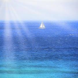 Sunray Sail Maui by Michele Hancock