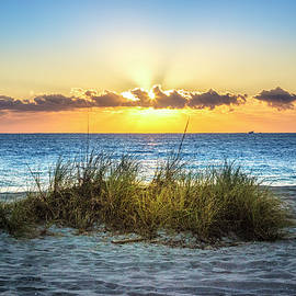 Sunrays on the Dunes by Debra and Dave Vanderlaan