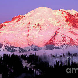Sunrise At Mount Rainier - Mural by Douglas Taylor