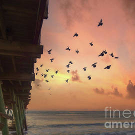 Sunrise Flock by Kelley Freel-Ebner