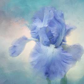 Sunrise Iris by Terry Davis