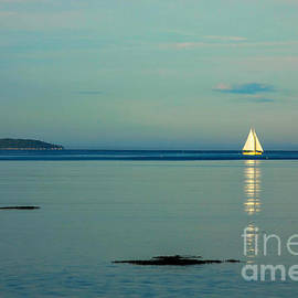 Sunrise on the Sails by Diane Diederich