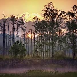 Sunrise Over Florida Everglades by Rebecca Herranen