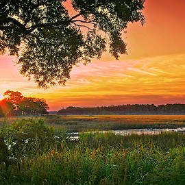 Sunrise Over Marsh by Phill Doherty