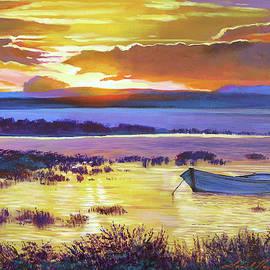 Sunrise Over The Salt Marsh by David Lloyd Glover