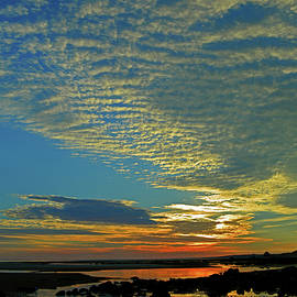 Sunrise Sky - Cape Cod Bay  by Dianne Cowen