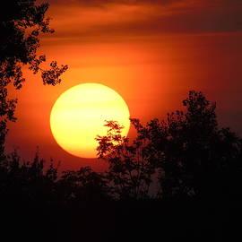 Sunset by Anita Gendt van