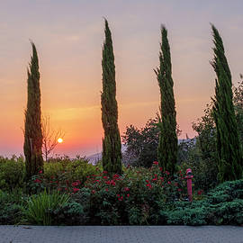 Sunset at Kibbutz Eilon by Dubi Roman