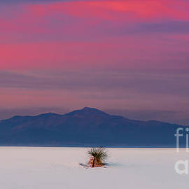 Sunset at White Sands National Monument by Henk Meijer Photography