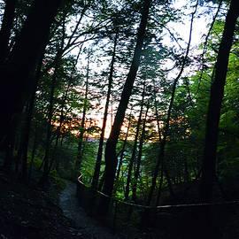 Sunset - Buttermilk Falls 1 by Harsh Malik