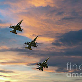 Sunset Flight by Bob Hislop
