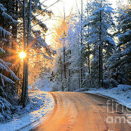 Sunset Gold on Country Road 2 by Taina Sohlman
