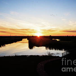 Sunset Grosse Savanne by Scott Pellegrin