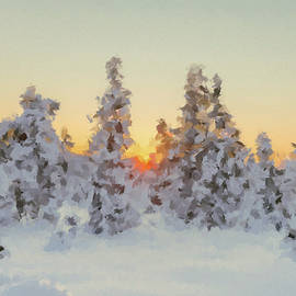 Sunset in Winter Forest by Alex Mir
