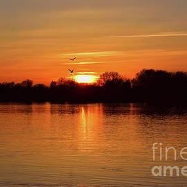 Sunset Love II by Leonida Arte