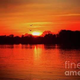 Sunset Love III by Leonida Arte