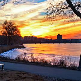 Sunset on the Esplanade - Boston by Joann Vitali