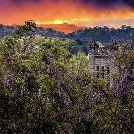 Sunset On Wisteria Rome Georgia  by Gary Shindelbower
