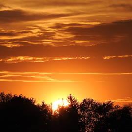 Sunset over Lake Walloon by Barbara Ebeling